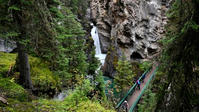 johnston canyon with cascade flowing in deep forest at banff national park - banff stock videos & royalty-free footage