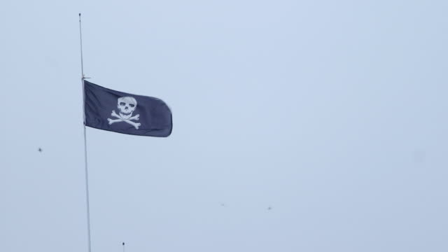 jolly roger pirate flag waving in the wind - jolly video stock e b–roll