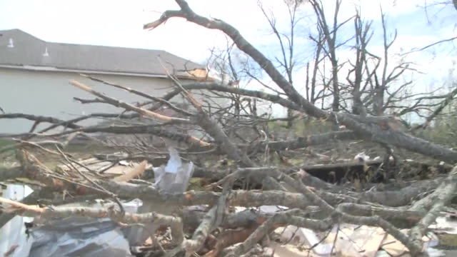 wreg jonesboro ar us fallen trees and demolished houses after tornado on saturday march 29 2020 - blowhole stock videos & royalty-free footage