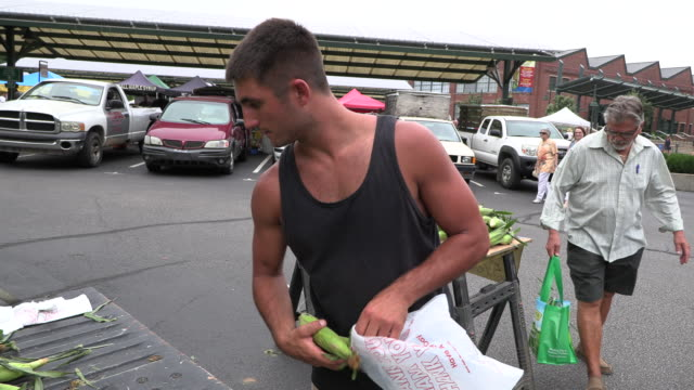 vídeos de stock, filmes e b-roll de jordan meurer of knox county indiana sells sweet corn he grew on his family's 15 acre farm during the bloomington indiana community farmer's market... - bloomington indiana