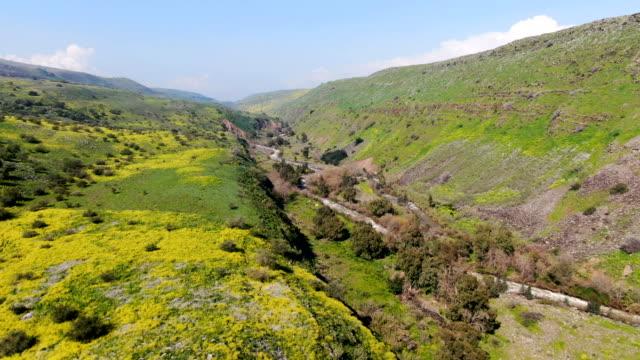vidéos et rushes de jordan river with flower bloom in upper galilee / aerial - vallée