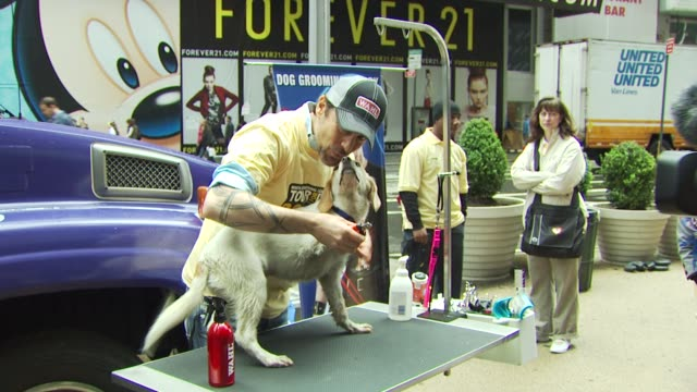 jorge bendersky at the mya hosts north shore animal league's tour for life 2010 grand finale at new york ny. - 歌手 マイア点の映像素材/bロール