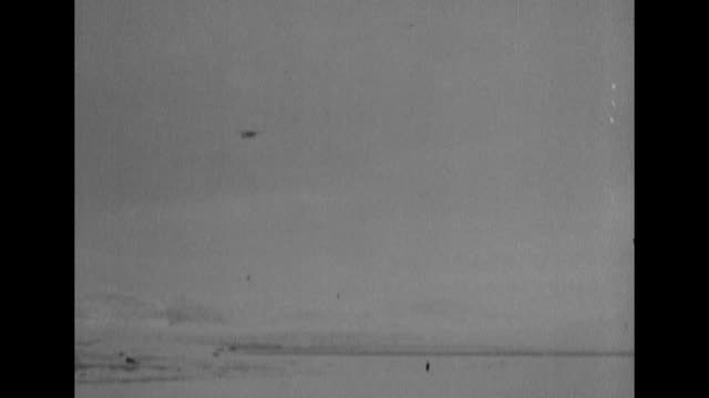 int josephine ford airplane as pilot floyd bennett opens window looks out / pov from plane of the expedition's camp below on kings bay in spitsbergen... - exploration stock videos & royalty-free footage