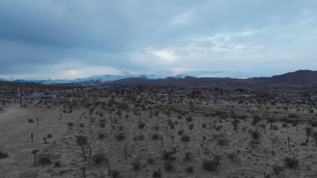 joshua tree 4k drone - yucca stock videos & royalty-free footage