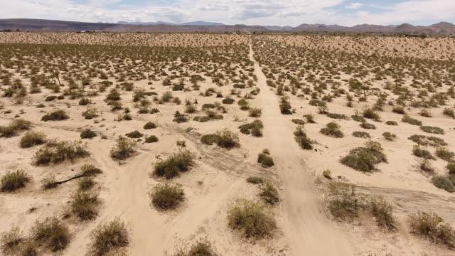 joshua tree desert landscape - deserto mojave video stock e b–roll