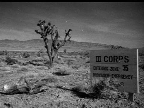 Joshua tree in desert w/ mountains BG Angled WS Joshua tree w/ US Army sign 'III Corps Entering Zone 35 Ordnance Emergency' Cold War testing military...