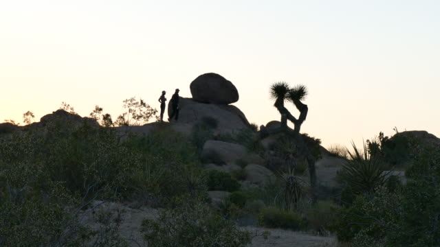 joshua tree national park at dusk two young women walking on a hill ridge in silhouette they stop to talk and then move on sunset in the mojave... - ridge stock videos & royalty-free footage