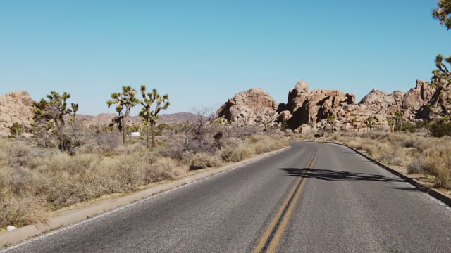 joshua tree national park in california western usa desert 4k video - joshua tree national park stock videos & royalty-free footage