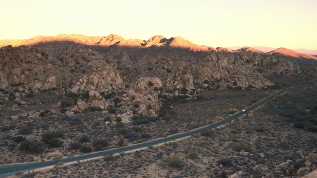 joshua tree national park - joshua tree national park stock videos & royalty-free footage