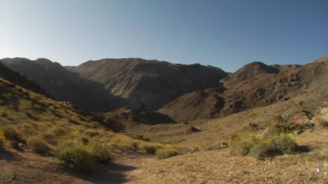 Joshua Tree trails in California