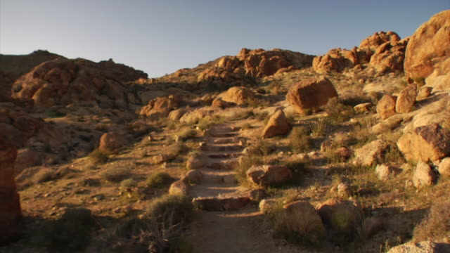 joshua tree trails in california - joshua tree national park stock videos & royalty-free footage