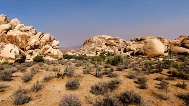 joshua tree - joshua tree national park stock videos & royalty-free footage