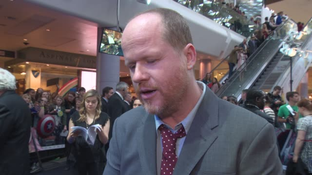 INTERVIEW Joss Whedon on pressure of making a 2nd film bringing more to the characters Paul Bettany at 'Avengers The Age of Ultron' Premiere at...