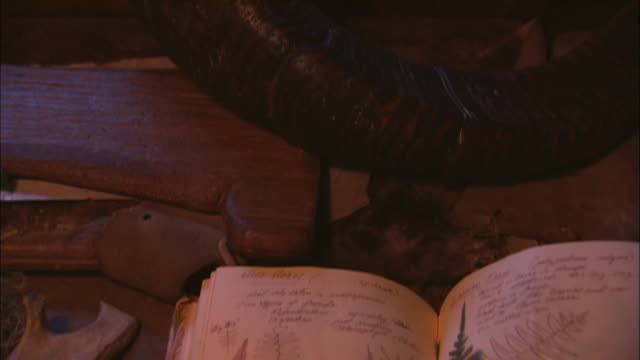 A journal with leaf samples lies next to a bone and an powder horn.