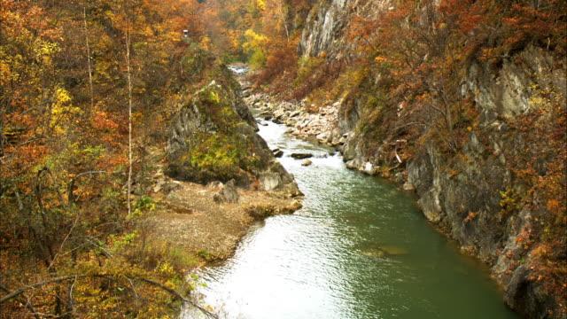 jouzankei  autumn leaves  fallen leaves  dead leaf  canyon  toyohira river - 峡谷点の映像素材/bロール