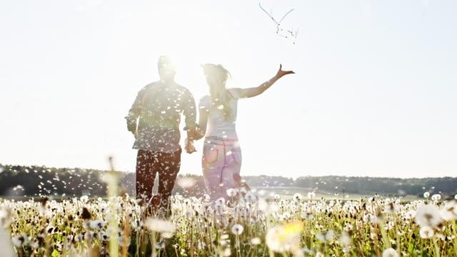 slo mo joyful couple among dandelion seeds - dandelion stock videos & royalty-free footage