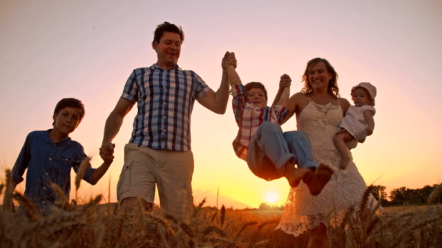 slo mo joyful family in wheat field at sunset - family with three children stock videos & royalty-free footage