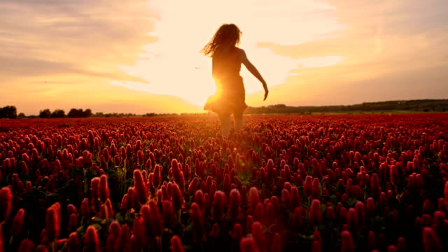 slo mo joyful girl running among flowers at sunset - sundress stock videos & royalty-free footage