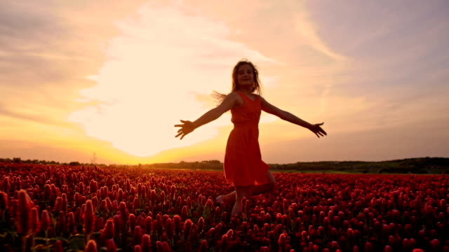 slo mo joyful girl twirling among flowers at sunset - sundress stock videos & royalty-free footage