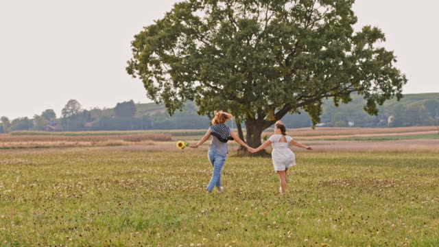 ds joyful mother and daughter in a meadow - skipping along stock videos & royalty-free footage