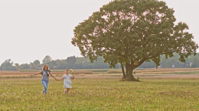 DS Joyful mother and daughter skipping in a meadow