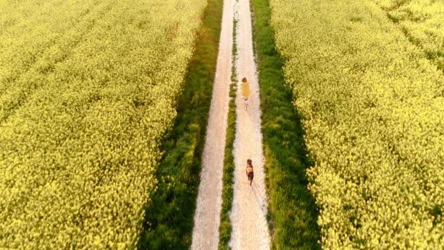 田舎で彼女の犬と一緒にサイクリング空中のうれしそうな女性 - 田畑点の映像素材/bロール