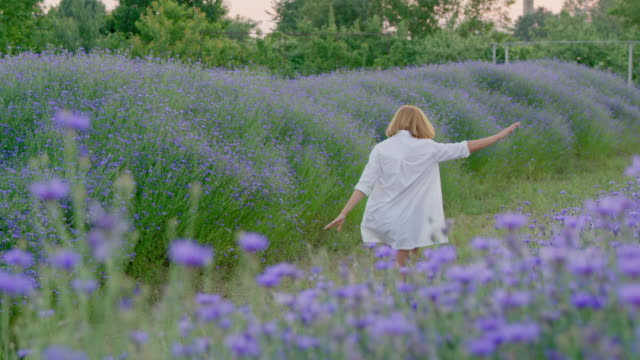slo mo joyful woman hopping along field of cornflowers - only mid adult women stock videos and b-roll footage
