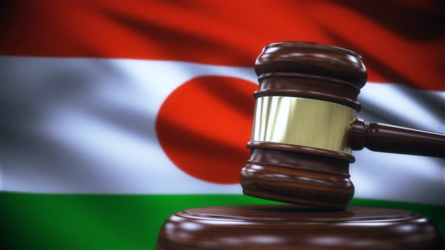 Judge Gavel with Niger Flag Background