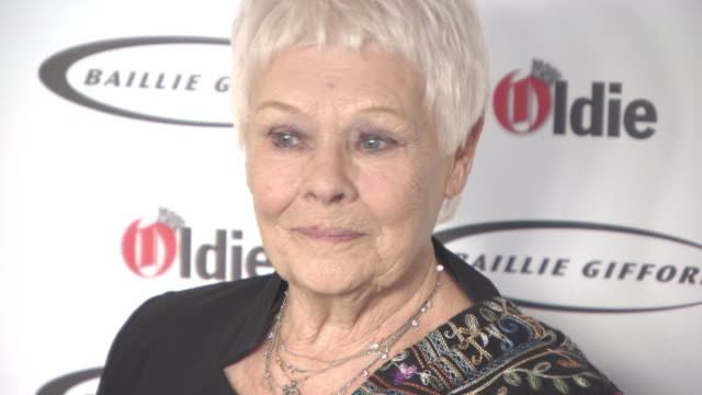 judi dench at the oldie of the year awards at simpsons in the strand on january 30, 2018 in london, england. - ジュディ・デンチ点の映像素材/bロール