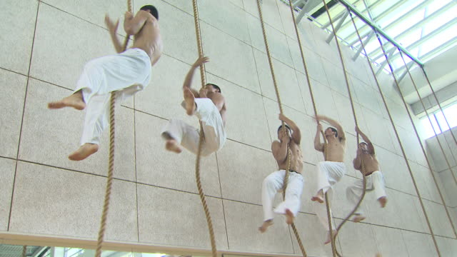 ms tu td judo players climbing rope / seoul, south korea - sporthalle stock-videos und b-roll-filmmaterial