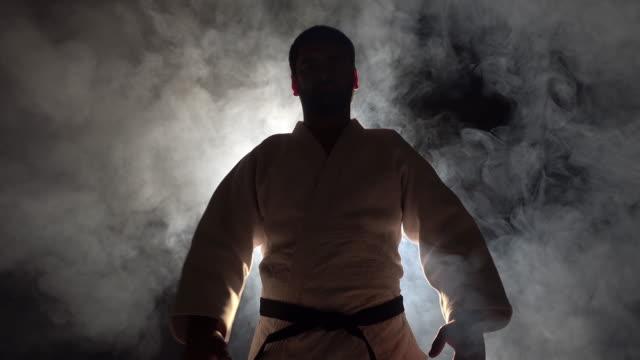 Judokas Fighter