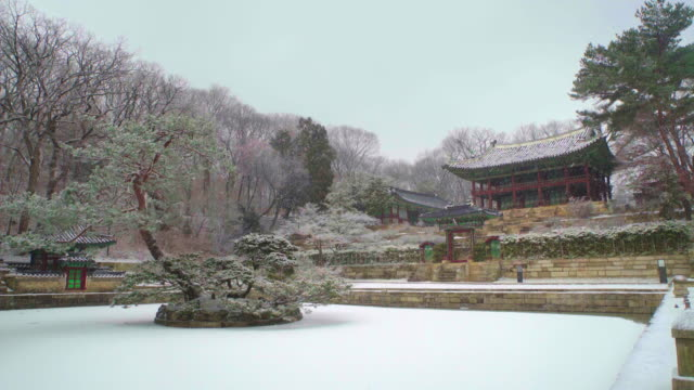 juhamnu pavilion and frozen buyongji pond in changdeokgung palace (unesco world heritage site in seoul) during winter - standing water yard stock videos & royalty-free footage