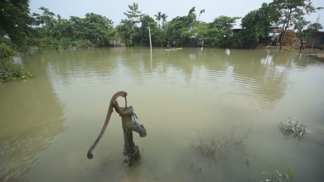 vidéos et rushes de july 2020 a submerged hand pump in a flooded area at buraburi village in morigaon district of assam on wednesday july 1 2020 - bananier