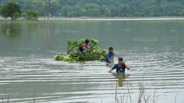 july 2020. villager carries tree leaves for cattle, due to monsoon rains, in a flood affected village morigaon district of assam, india, 20 july... - monsoon stock videos & royalty-free footage