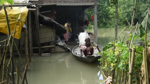 vidéos et rushes de july 2020 villager uses a country boat to move across a flooded area due to monsoon rains in morigaon district of assam india 13 july 2020 according... - bananier