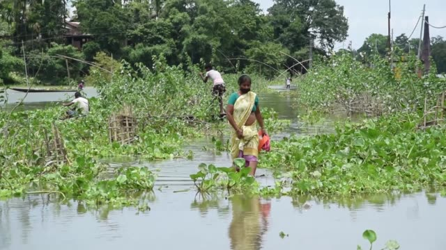 july 2020. villager walking through the flooded area, due to monsoon rains, in a flood affected village kamrup district of assam, india, 23 july... - walking in water stock videos & royalty-free footage