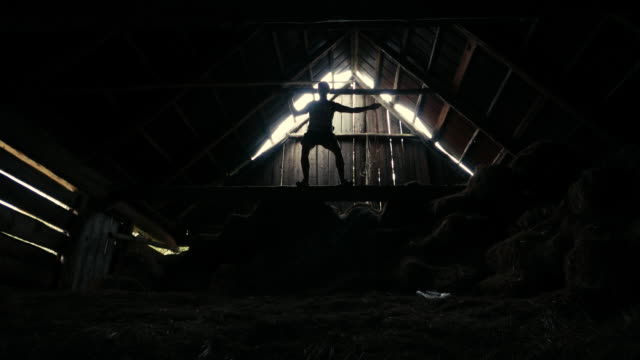 jumping on a hay. inside barn - haystack stock videos & royalty-free footage