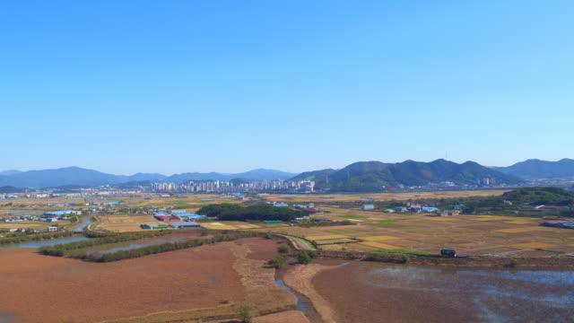 junam reservoir and the village / changwon-si, gyeongsangnam-do, south korea - baumgruppe stock-videos und b-roll-filmmaterial