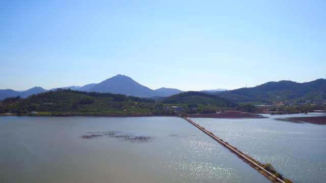 junam reservoir / changwon-si, gyeongsangnam-do, south korea - baumgruppe stock-videos und b-roll-filmmaterial