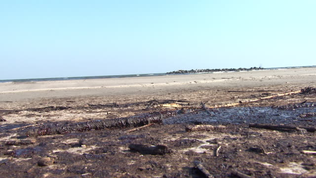 june 10 2010 montage oil washed on shore and beach / gulf of mexico united states - oil spill stock videos & royalty-free footage