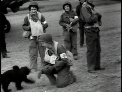 june 1944 ws female medical transport pilot playing with a dog while others stand and watch / france - 1944 stock videos and b-roll footage