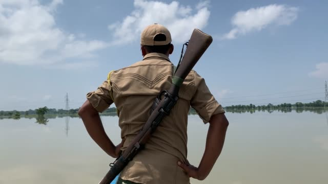 june 2020. forest guards patrol at pobitora wildlife sanctuary following flooding in the low-lying areas, in morigaon district of assam on tuesday,... - 角のはえた点の映像素材/bロール