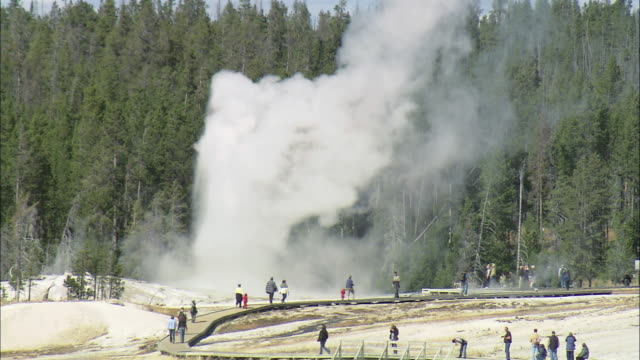 june ha old faithful erupting at yellowstone national park / wyoming, united states - old faithful stock videos & royalty-free footage