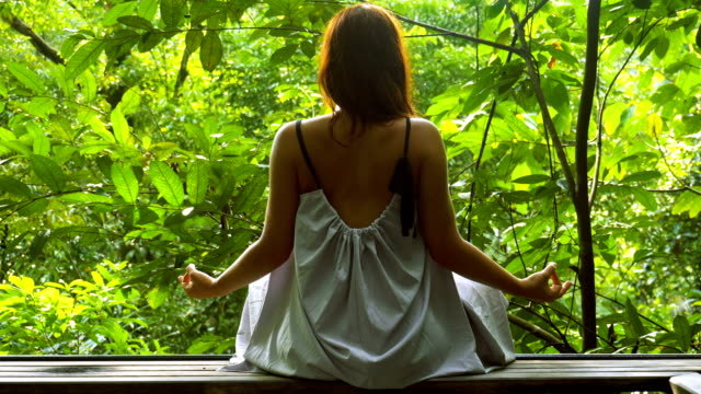 jungle meditation. woman admiring rainforest - one young woman only stock videos & royalty-free footage