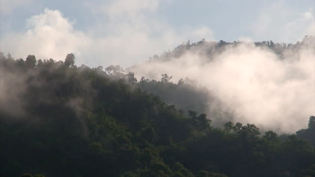 jungle mountains - myanmar stock videos & royalty-free footage