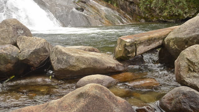 jungle rocky river - leite stock videos and b-roll footage