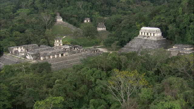 vídeos de stock e filmes b-roll de jungle surrounds the ruins of palenque. - palenque