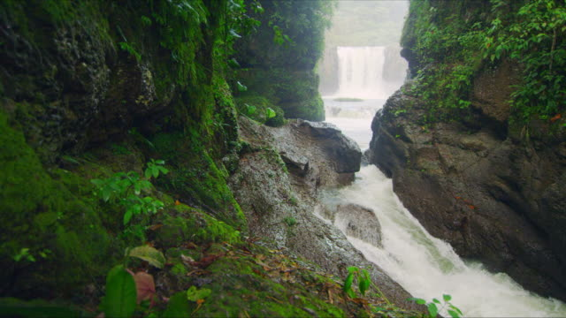 Jungle waterfall and river