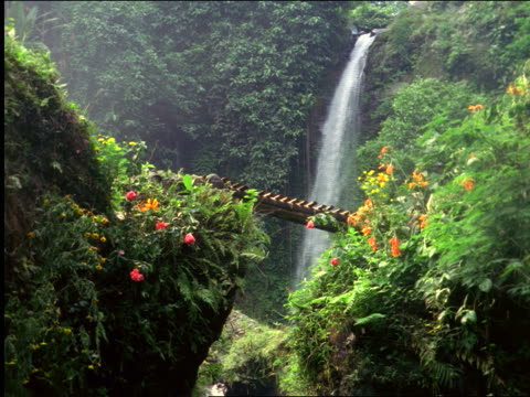 jungle with waterfall in background + footbridge in foreground / jakarta, indonesia - anno 1999 video stock e b–roll