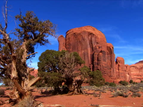 junipers and red butte - butte rocky outcrop stock videos & royalty-free footage